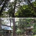 若狭姫神社(若狭彦神社下社。小浜市遠敷)日枝・中宮