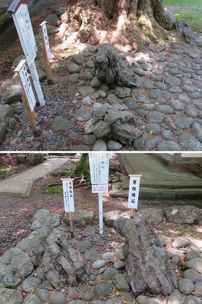 若狭姫神社(若狭彦神社下社。小浜市遠敷)陽石・陰石・子種石
