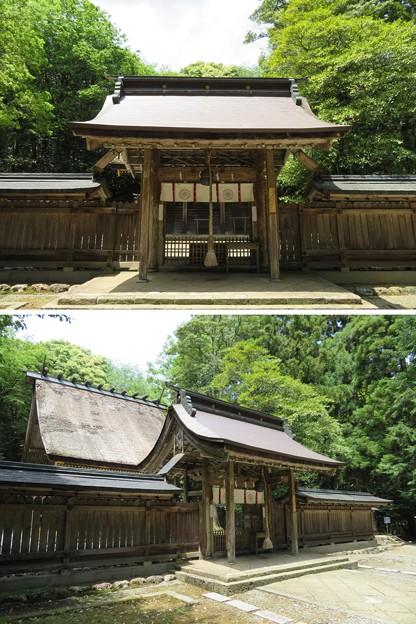若狭彦神社(上社。小浜市竜前)神門