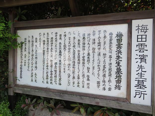 松源寺(小浜市)