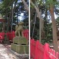 Photos: 小浜城本丸/小浜神社(福井県小浜市城内)八助稲荷