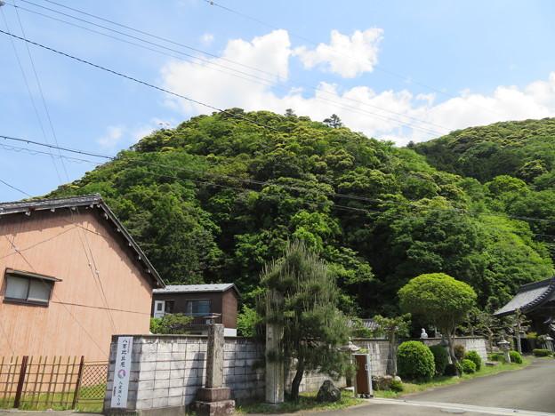 空印寺/若狭武田氏居館跡(小浜市)後瀬山城