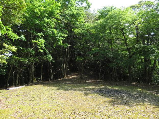 愛宕神社/後瀬山城(小浜市)四郭