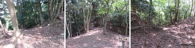 Photos: 愛宕神社/後瀬山城(小浜市)四郭・三郭間 土橋・堀切