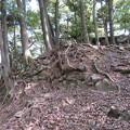 Photos: 愛宕神社/後瀬山城(小浜市)本郭
