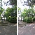 Photos: 高浜城(高浜町)二郭