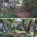 Photos: 高浜城(高浜町)本郭