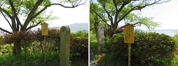 天橋立(宮津市。与謝野町・一字観公園)与謝野晶子・与謝野鉄幹歌碑