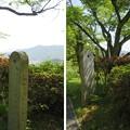 Photos: 天橋立(宮津市。与謝野町・一字観公園)与謝野晶子・与謝野鉄幹歌碑
