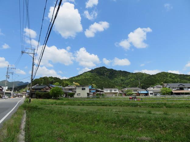 黒井城(兵庫県丹波市)南より