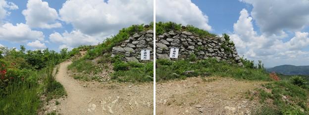 黒井城(兵庫県丹波市)東郭