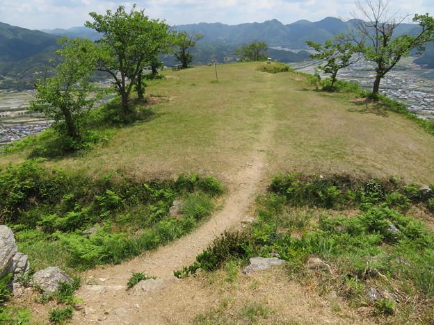黒井城(兵庫県丹波市)本郭より