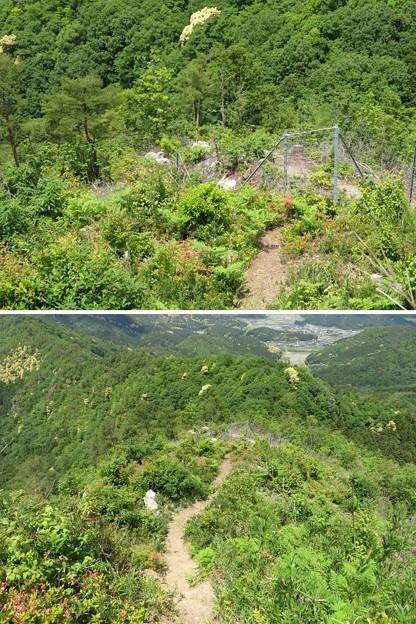 黒井城(兵庫県丹波市)西の城(西の丸)