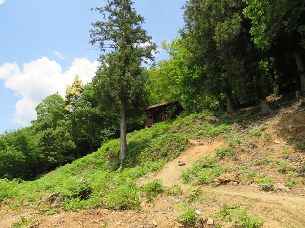 黒井城(兵庫県丹波市)石踏の段 段郭
