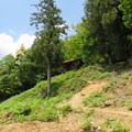 Photos: 黒井城(兵庫県丹波市)石踏の段 段郭