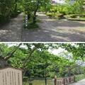 亀山城/南郷公園(亀岡市)