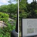 亀山城/南郷公園(亀岡市)城址碑