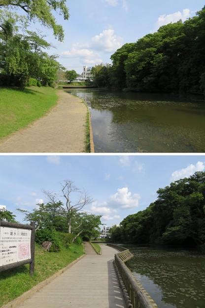 亀山城/南郷公園(亀岡市)南郷池