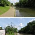 Photos: 亀山城/南郷公園(亀岡市)南郷池