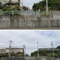 国道134号線(鎌倉市七里ガ浜)