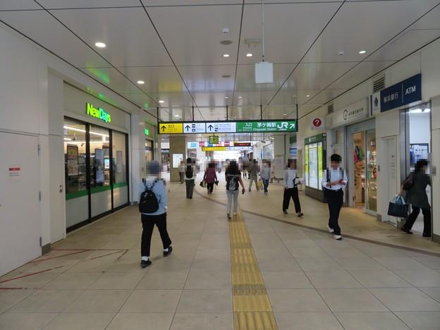 茅ヶ崎駅南口コンコース(茅ヶ崎市)