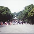 Photos: 94.05.25.鶴岡八幡宮(鎌倉市)