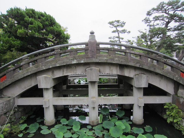 Photos: 11.06.20.鶴岡八幡宮(鎌倉市)太鼓橋