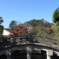 Photos: 14.12.08.鶴岡八幡宮(鎌倉市)太鼓橋