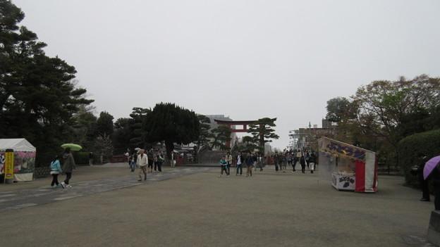 Photos: 15.04.03.鶴岡八幡宮(鎌倉市)太鼓橋・三の鳥居
