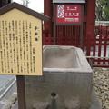 Photos: 11.03.14.浅草寺(台東区)二天門前手水鉢