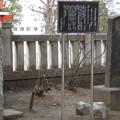 11.03.14.浅草神社(台東区)初代中村吉右衛門句碑