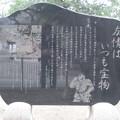 11.03.14.浅草神社(台東区)こち亀碑