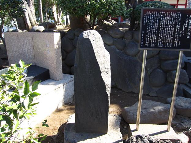 12.02.21.浅草寺(台東区)芭蕉句碑