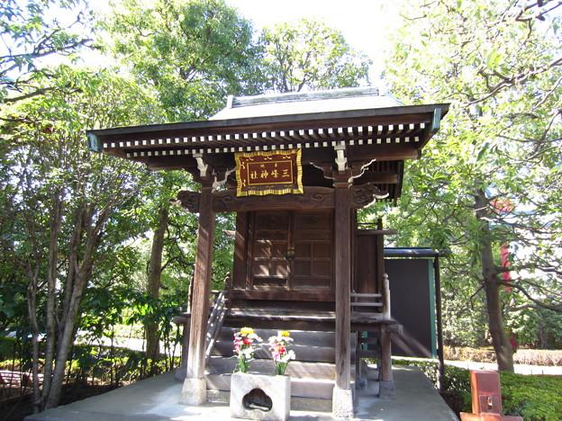 Photos: 12.02.21.浅草寺(台東区)三峰神社