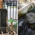 Photos: 13.07.10.鯨塚(品川区東品川)
