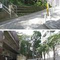 Photos: 10.11.02.権現山公園(品川区北品川)
