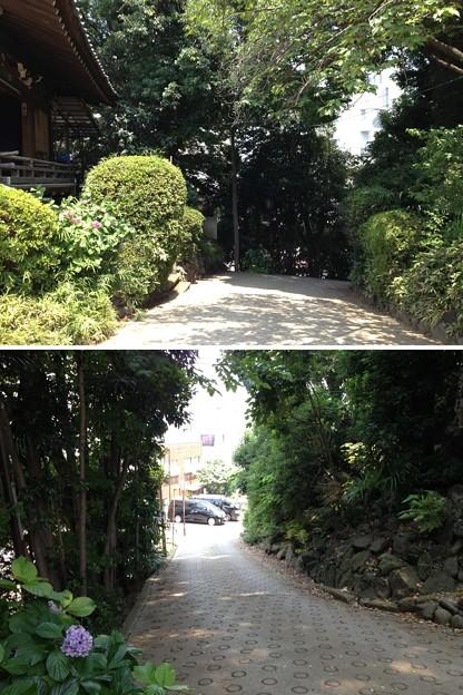 13.07.10.品川神社(品川区北品川)女坂?