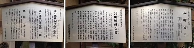 14.01.15.品川神社(品川区北品川)