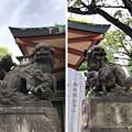 品川神社(品川区北品川)