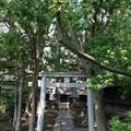 Photos: 13.07.10.荏原神社(品川区北品川2丁目)末社