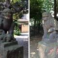 Photos: 13.07.10.南品川諏方神社(南品川)