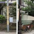 Photos: 旧東海道 妙国寺門前町/東海道南品川交差点(南品川2丁目)