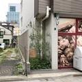 Photos: 旧東海道 品川寺門前町(品川区南品川3丁目)亀山宿の街道松