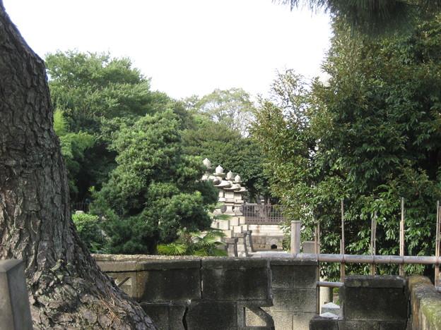 Photos: 10.11.02.海晏寺(南品川)越前松平家墓所