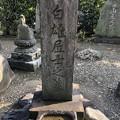 Photos: 18.03.22.海晏寺(南品川)混沌未整理地?