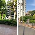Photos: 仙台藩伊達家下屋敷跡(品川区東大井4丁目)