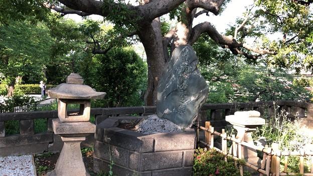 山内家合祀之墓(品川区営 大井公園)