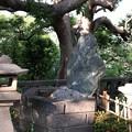 Photos: 山内家合祀之墓(品川区営 大井公園)