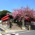 Photos: 12.04.18.妙厳寺 豊川稲荷東京別院(港区元赤坂)惣門
