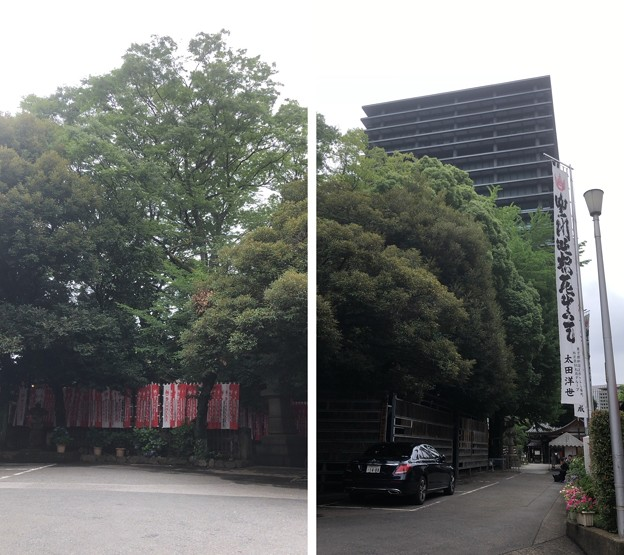 妙厳寺 豊川稲荷東京別院(港区元赤坂1丁目)